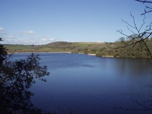Loe Pool - largest fresh water lake in Cornwall